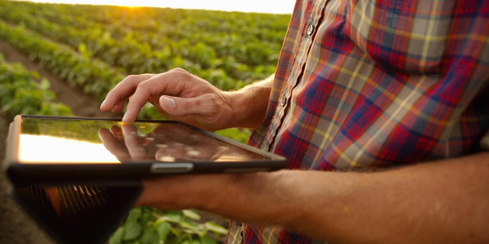 Receituário agronômico já é liberado via internet