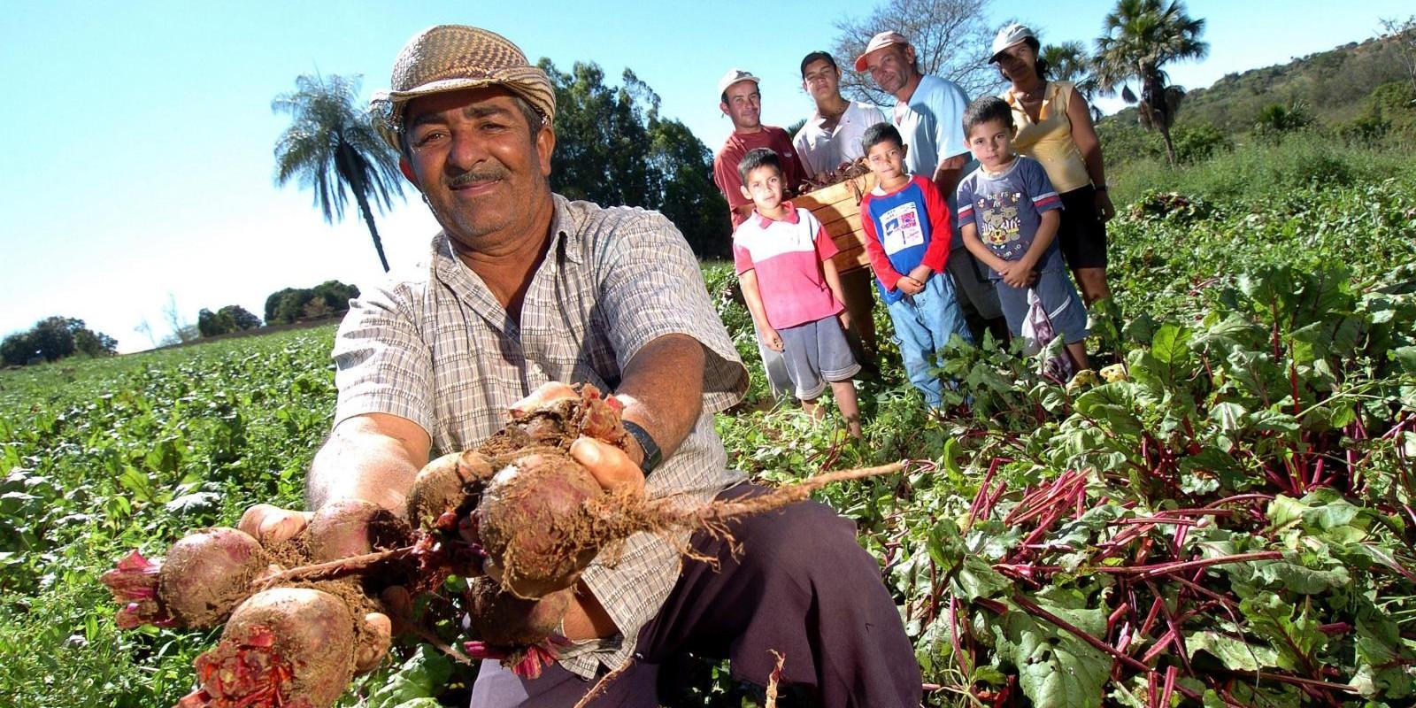Seaf promove stand da agricultura familiar na Expoagro