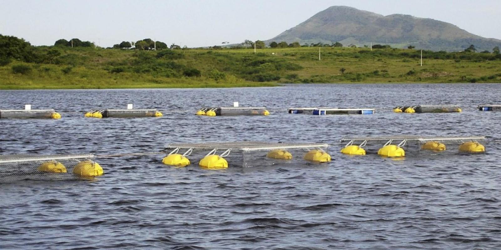 Governo de Minas Gerais soma esforços para agilizar o licenciamento ambiental dos piscicultores