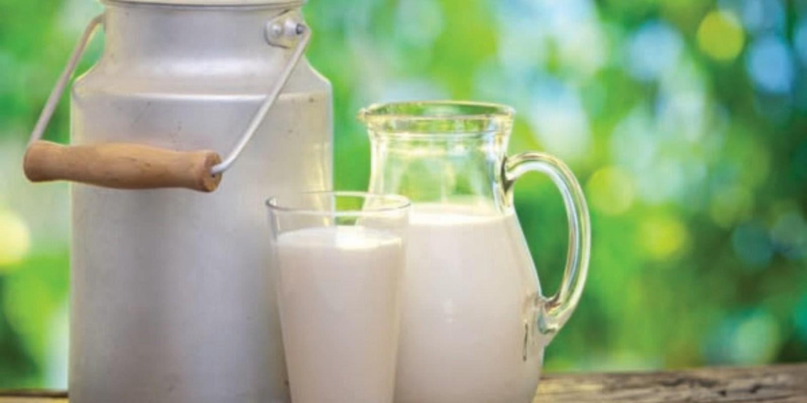 Setor leiteiro pede agilidade na votação do PL do Fundoleite
