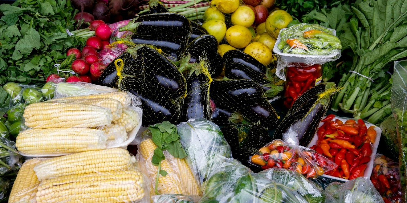 Escolas estaduais mineiras serão abastecidas com alimentos da agricultura familiar