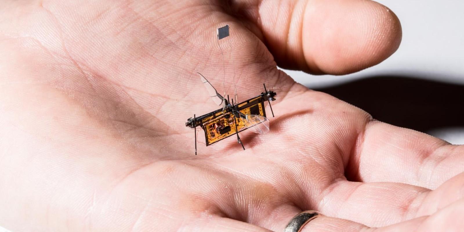 Robô voador monitora lavouras nos EUA