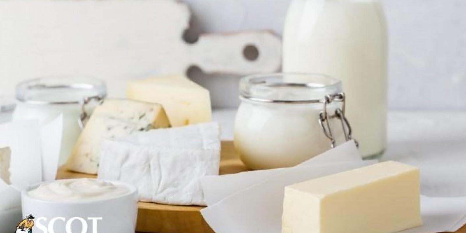 Quedas nas importações de lácteos no acumulado de janeiro a agosto