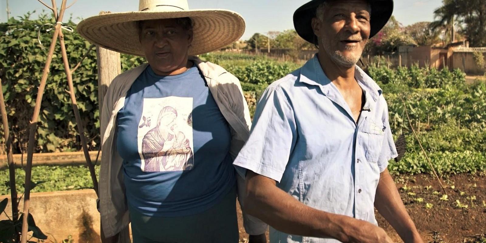 Agricultores familiares terão crédito de R$ 33 bilhões do Pronaf para a próxima safra