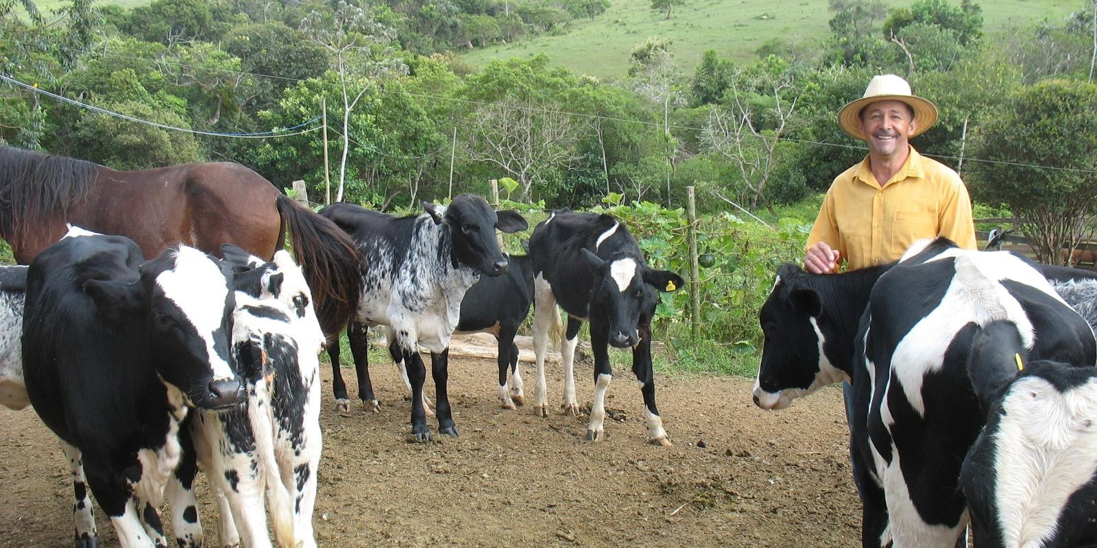 Programa de gestão de propriedades leiteiras melhora rentabilidade de agricultores familiares de Medeiros
