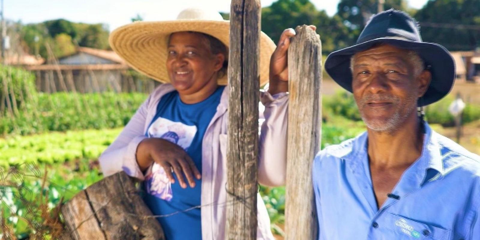 Dia do Produtor Rural Mineiro: Números mostram a importância da agropecuária no estado