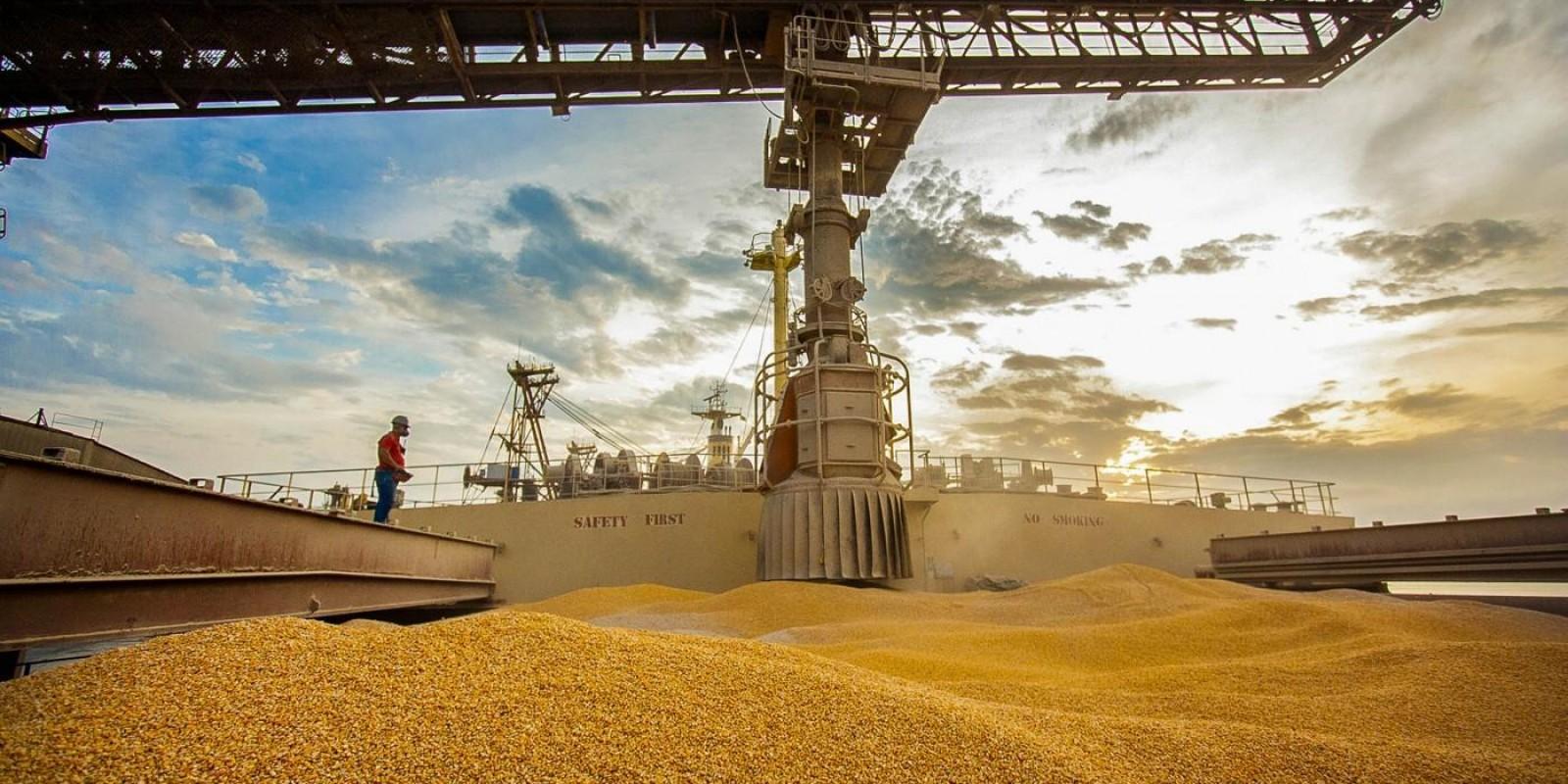 Em 3 dias de julho, Brasil já exportou 82% do volume de milho total registrado em todo o mês de junho